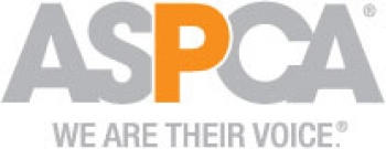 ASPCA Offers $5,000 Reward for Information Leading to Arrest in Heinous Long Island Animal Cruelty Case