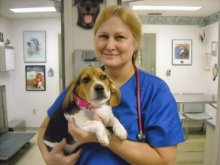 Dr. Suzanne Topor - Livingston Animal & Avian Hospital - Lutz, Florida