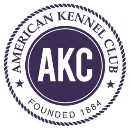 THE AMERICAN KENNEL CLUB ANNOUNCES FIRST SET OF 2017 AKC PAW OF COURAGE AWARDS