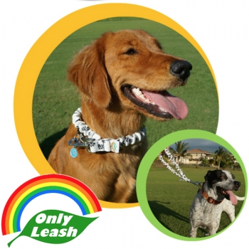 Inventor & CEO of ONLY LEASH, Brett Flippen, will join Jon and Talkin' Pets 04/15/2017 at 630pm EST to discuss and give away his Only Leash
