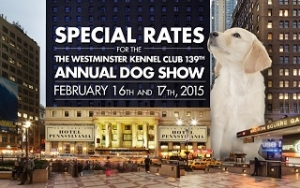 Jerry Grymek - Doggie Concierge at Hotel Penn to appear on Talkin' Pets 2/14/15 for the 139th Annual Westminster Kennel Club Dog Show broadcast