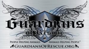 "Winter Is Coming: Guardians of Rescue Amps Up Rescue Operations and Expands ""Gimme Shelter Program"""
