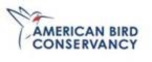 American Bird Conservancy Offers Reward for Conviction in Bald Eagle Deaths