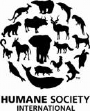 South Korean Dog Meat Farmer & Humane Society International Join Forces to End Dog Farming, Rescue Dogs, and Urge End to Dog Meat Trade