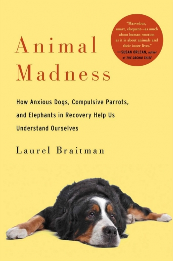 Laurel Braitman - author of Animal Madness will join Jon and Talkin' Pets 6/28/14 at 5 PM EST to discuss and give away her new book