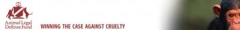 Animal Advocates Win Free Speech Case, Judge Dismisses Meritless Trespassing Suit Intended to Silence Critics