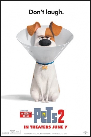 "ATTENTION FLORIDA: ENTER TO WIN ADVANCE SCREENING PASSES FOR ""THE SECRET LIFE OF PETS 2"""