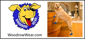 Lorraine Walston owner of Woodrow Wear LLC Power Paws, socks for dogs will join Jon and Talkin's Pets 10/20/18 at 630pm EST to discuss and give away her Power Paws line