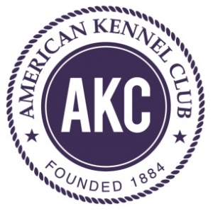 AMERICAN KENNEL CLUB ANNOUNCES THE RECIPIENTS OF  2017 LIFETIME ACHIEVEMENT AWARDS