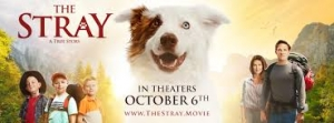 Mitch Davis, Director and Writer of The Stray will join Jon and Talkin' Pets 10/07/17 at 630pm EST to discuss his film