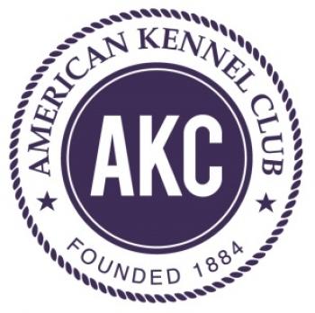AKC ANNOUNCES 2017 LIFETIME ACHIEVEMENT  AWARD FINALISTS