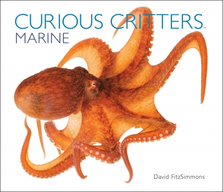 David FitzSimmons, writer, photographer, Curious Critters Marine will join Jon and Talkin' Pets 3/14/15 at 5 PM EST to discuss and give away his book