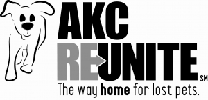 AKC Reunite Pet Disaster Relief Efforts Continue in North Carolina Post Hurricane Matthew