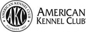 THE AMERICAN KENNEL CLUB ANNOUNCES RECIPIENTS OF  2019 VETERINARY SCHOLARSHIPS
