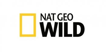 NAT GEO WILD PARTNERS WITH RED DIGITAL CINEMA ON  INNOVATIVE WILDLIFE FILMMAKING CHALLENGE