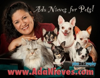 Ada Nieves Co-Chair of the New York Pet Fashion Show at Hotel Penn will join Jon and Talkin' Pets 2/13/16 at 7:15 PM EST to discuss this years fashion show and The Westminster Kennel Club Dog Show