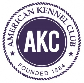 THE AMERICAN KENNEL CLUB LAUNCHES NEW TRICK DOG TITLING PROGRAM