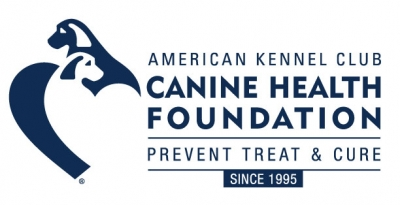 AKC Canine Health Foundation Announces $2.8 Million in Canine Health Grants in 2019