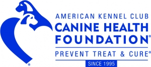 AKC Canine Health Foundation and V Foundation for Cancer Research Join Forces to Fight Cancer