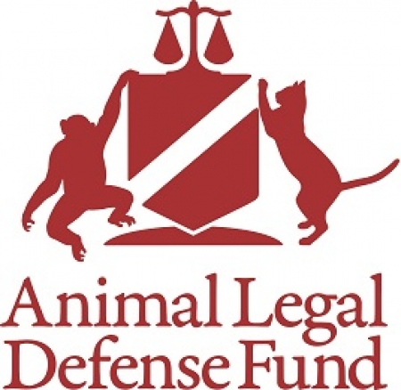 Lora Dunn, Director of the Criminal Justice Program at the Animal Legal Defense Fund will join Jon and Talkin' Pets 2/24/18 at 630pm EST to discuss AMERICA'S TOP TEN ANIMAL DEFENDERS STAND UP FOR THE VOICELESS