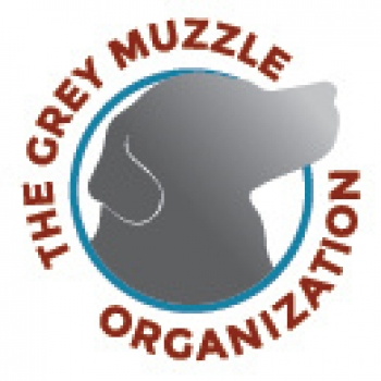 Lisa Lunghofer, Executive Director of The Grey Muzzle Organization will join Jon and Talkin' Pets 11/03/18 at 5pm EST tp discuss her work with older dogs
