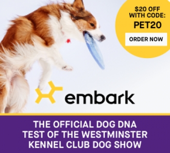 Ryan Boyko, Founder and CEO of Embark, will join Jon and Talkin' Pets 2/9/19 at 630pm ET live from Hotel Penn in NYC for the 143rd Westminster Kennel Club Dog Show broadcast