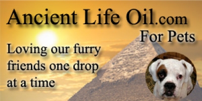 Ronnie McMullen CEO of Ancient Life Oil will join Jon and Talkin' Pets 11/24/18 at 721pm EST to discuss CBD for pets