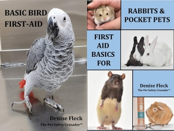 "Denise Fleck author of ""Basic Bird First Aid"" & ""First Aid Basics for Rabbits and Pocket Pets"" will join Jon and Talkin' Pets 10/27/18 at 5pm EST to dicuss and give away her new books"