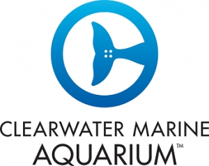 David Yates, CEO of the Clearwater Marine Aquarium will join Jon and Talkin' Pets 10/21/17 at 5pm EST to discuss the past, present and future of the aquarium as well as life with the famous dolphins Winter & Hope