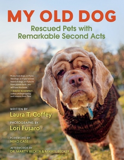 "Author Laura Coffey will join Jon and Talkin' Pets this Saturday 11/09/19 at 5pm ET to discuss and give away her book ""My Old Dog"""