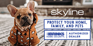 Skyline Home Security