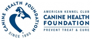 AKC Canine Health Foundation Marks Pet Cancer Awareness Month with Free Online Resources