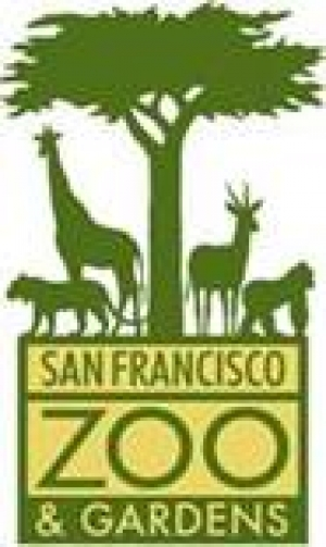 Celebrate Lunar New Year at San Francisco Zoo & Gardens