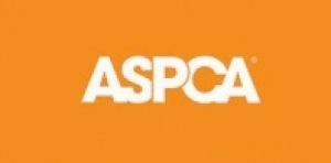 ASPCA Pledges $15,000 to Feed Livestock Impacted by Blackfeet Wildfires