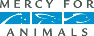 Mercy for Animals shares video on sharks