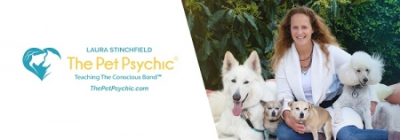 "Laura Stinchfield, Pet Psychic and author of ""Stormy's Words of Wisdom"" & ""Voices of the Animals"" will join Jon & Talkin' Pets 5/16/20 at 5pm ET to discuss and give away her books"