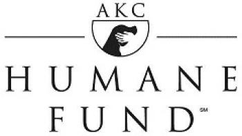 Do you Know a CANINE HERO? NOMINATE A DOG FOR AN  AKC HUMANE FUND AWARD FOR CANINE EXCELLENCE!