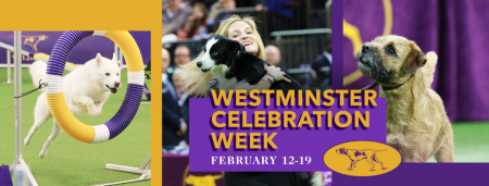 Welcome to Westminster Celebration Week!