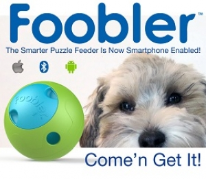 Jo Chan from Cynjo will join Jon and Talkin' Pet 11/01/14 at 6:30 PM EST to discuss and give away his dog product the Foobler