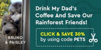 Exciting News from Life Boost Coffee - Remember to add the word PETS in the promo box to get 30% off your first orders