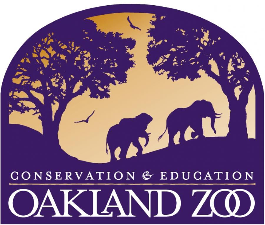 name oakland zoo s baby boy baboon