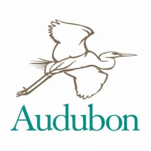 $25,000 Scholarship Will Send More Than 100 Campers to Audubon Centers This Summer