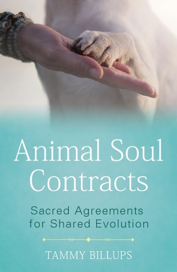 Tammy Billups, Author of Animal Soul Contracts,will join Jon & Talkin' Pets 5/8/21 at 620pm ET to discuss and give away her new book