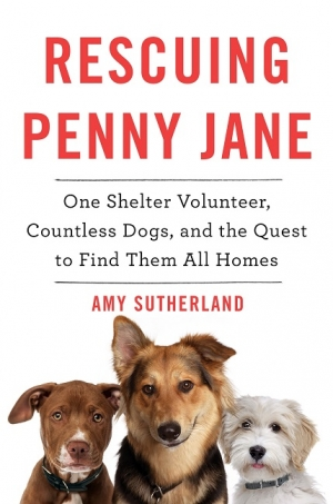 Author Amy Sutherland, Rescuing Penny Jane, will join Jon and Talkin' Pets 2/25/17 at 5pm EST to discuss and give away her new book