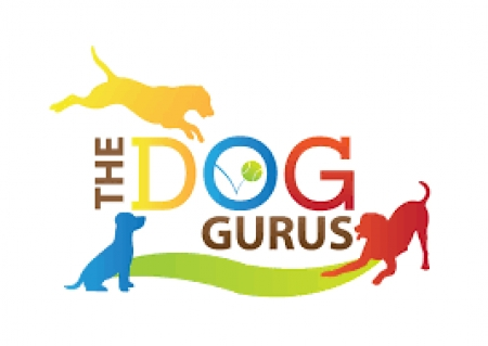 Robin Bennett, Co-Founder of The Dog Gurus and author of several books will join Jon & Talkin' Pets 6/06/20 at 630pm ET to discuss dog day cares & business's as they plan to reopen during Covid-19