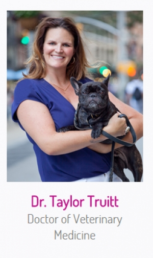 Dr. Taylor Truitt, NYC Vet, will stop by to join Jon and Talkin' Pets live from Hotel Penn 2/13/16 at 7:40 PM EST to discuss life as a NYC vet and pet health and safety while on the go