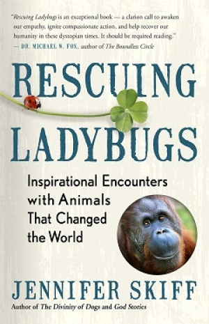 "Jennifer Skiff, Author of ""Rescuing Ladybugs"" will join Jon and Talkin' Pets 9/01/18 at 5pm EST to discuss and give away her new book"