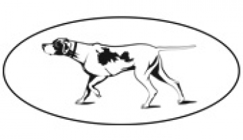 The Westminster Kennel Club & Golden Retrievers