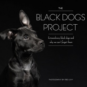 "Photographer Fred Levy will join Jon and Talkin' Pets this Saturday 9/19/15 at 5 PM EST to discuss and give away his book ""The Black Dogs Project"""