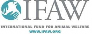 IFAW Statement on Oregon Ivory Ban